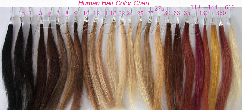 Hair Color Chart-Standard Human Hair Wigs Color Chart And