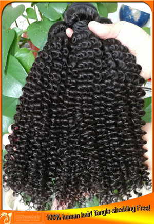 Brazilian Virgin Kinky Curl Human Hair Weave Bundles