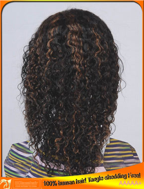 Indian Virgin Human Hair Highlight Lace Front Wig